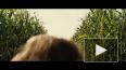 """Премьера фильма """"Тихое место"""" в Петербурге: цена, ..."""
