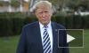 NYT узнала о докладе разведки США о помощи РФ в переизбрании Трампа