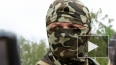 """Новости Украины: командир батальона """"Донбасс"""" бьет ..."""