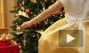 В Петербург привезли около тысячи рождественских пихт из Канады