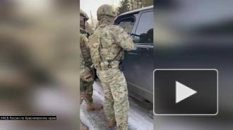 Красноярских предпринимателей уличили в контрабанде пиломатериалов