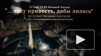 Праздник фонтанов в Петергофе посвятят 300-летию водоподводящей системы