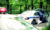 В Нижегородской области мотоциклист столкнулся с рогатым лосем, пассажир погиб вместе с животным
