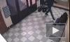Видео избиения и ограбления петербургских пенсионерок взорвало интернет