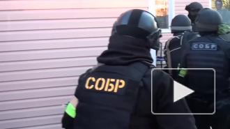 ФСБ сообщила о ликвидации террористической ячейки в Ростовской области