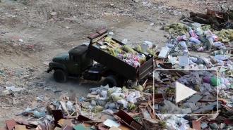 Минприроды предложило перестать взимать плату за собранный раздельно мусор с населения