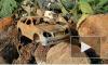 Видео: из выборгского колодца достали Мерседес