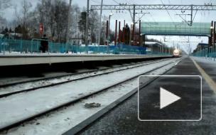 """Поезд """"Аллегро"""" в очередной раз сломался в пути"""