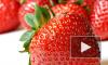 Высокопоставленный чиновник, возможно, размещает непристойное видео в Контакте