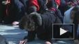 Северные корейцы оплакивают вождя, стоя на коленях