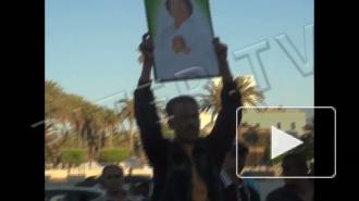 Война в Ливии: трупы мышей как символ перебежчиков
