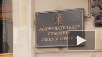 Петербуржцы требуют распустить парламент из-за решений по парку Малиновка и Исаакию