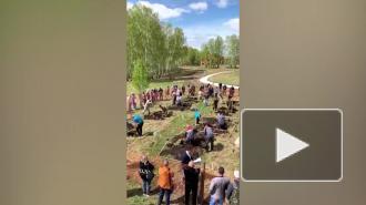 Петербург может принять следующий чемпионат по копанию могил на скорость