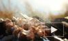В Правительстве РФ утвердили запрет на курение и приготовление шашлыка на балконах