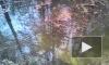 У реактора в Гатчине нашли новый бермудский треугольник