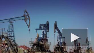 Саудовская Аравия начала страдать от падения цен на нефть