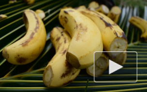 Эксперты: бананы обладают обезболивающим эффектом