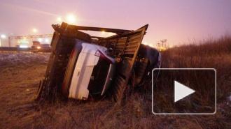 ДТП в Санкт-Петербурге: на КАД перевернулся автовоз с иномарками, на Петергофском шоссе погиб водитель Хонды