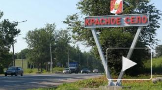 В петербургской коммуналке обнаружено тело годовалого младенца