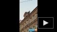 На Итальянской улице молодые люди устроили танцы на крыш...