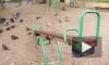 Труп женщины в лосинах нашли на детской площадке в Веселом поселке