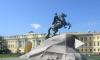 11-летнюю девочку укусила обезьяна у памятника Петру Первому в Петербурге, ребенку оказали помощь в больнице