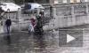 Героическое спасение Булочки из Фонтанки попало на видео