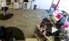 Видео из Нью-Йорка: Дикий олень ворвался в парикмахерскую и устроил там погром