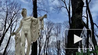 Скульптуры Летнего сада освободили от зимних футляров