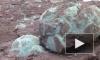 В Китае школьник нашел яйца динозавра возрастом 66 миллионов лет