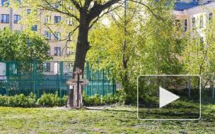 На месте захоронения строителей Петербурга может появиться общественный сад