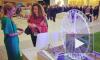 Самое высокое в Европе колесо обозрения может появиться в Петербурге