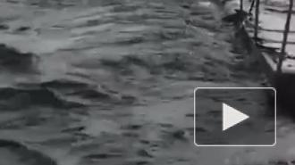 В Башкирии ребенка на роликах чуть не унесло бурным потоком воды