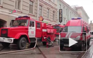 Калейдоскоп городских будней: обзор происшествий за неделю в Петербурге