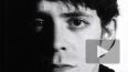Скончался легендарный Лу Рид, создатель группы Velvet ...