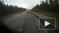 На видео попал момент смертельного ДТП на трассе СПБ-Выб...