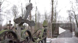 В Петербурге вандалы разгромили могилы на старообрядческом кладбище