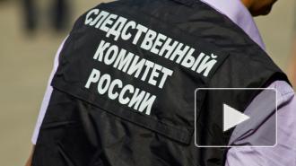 Суд арестовал бывшего вице-губернатора Мордовии Меркушкина на два месяца
