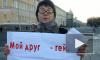 Геи и лесбиянки протестовали на Дворцовой