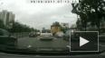ДТП в Подмосковье: погибли двое, в том числе сотрудник ...