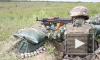 ООН назвала число погибших за пять лет войны в Донбассе
