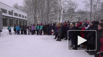 Выборжане отметили День российского студенчества