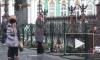 Утром в понедельник в Петербурге вспомнили жертв катастрофы над Синаем