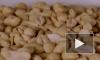 Ученые обнаружили в кишечнике спусковой механизм аллергии на арахис