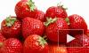 В Россию могут вернуться греческие апельсины, персики и клубника