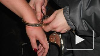 Петербурженка покусала женщину-полицейского, которая не хотела пускать ее на борт самолета в Пулково