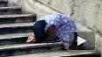 Гражданка Украины задержана в Подмосковье за торговлю ...