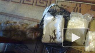 В Петербурге правоохранители изъяли 30 кг амфетамина в квартире на Ленинском