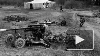 На Ржевке 300 человек стреляли друг в друга