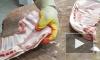 В Петербурге налетчики ограбили мясной магазин